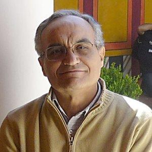 Gonzalo Bravo Castañeda